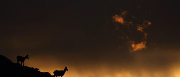 Nube de fuego © Miguel Antón